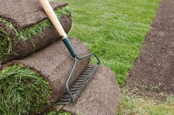Turf preparation services rendered in Newcastle